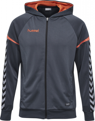Hummel Authentic Charge Zip Hoodie ombre blue-nasturtium