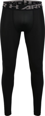Under Armour Heatgear 2.0 Herren Leggings schwarz-graphite L
