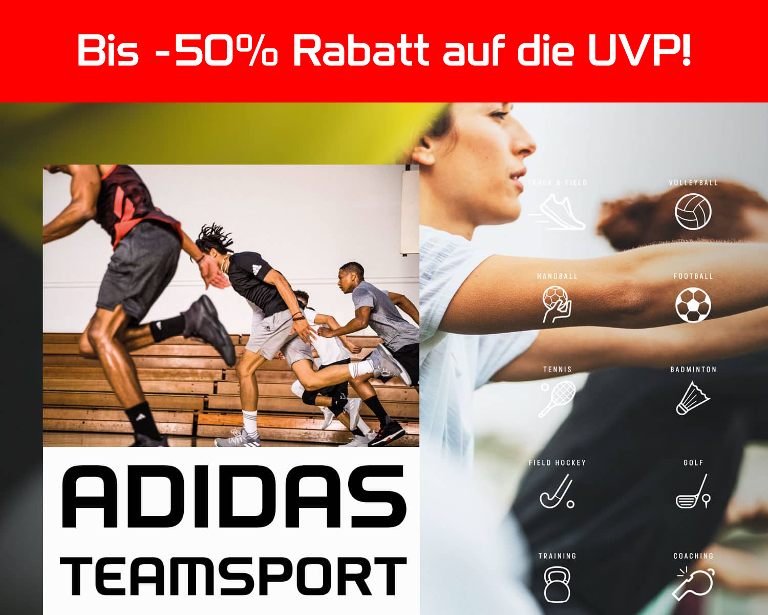 ADIDAS Teamsport 2019